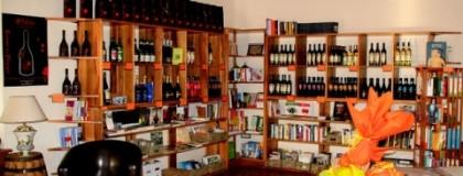 Wino i książki – rodzinna pasja